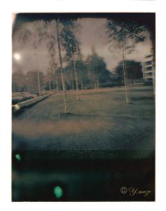 park 2011