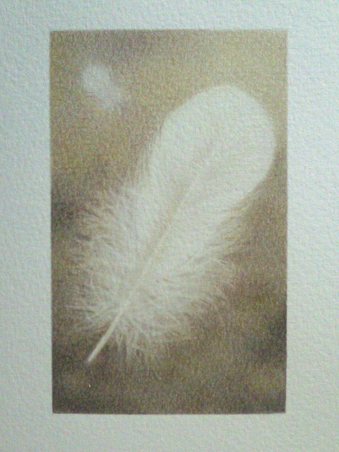 「羽 〜穏和〜」 10×6.2cm 色鉛筆、水彩色鉛筆、BBケント紙