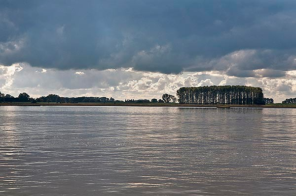 Trees and Clouds over the Elbe River
