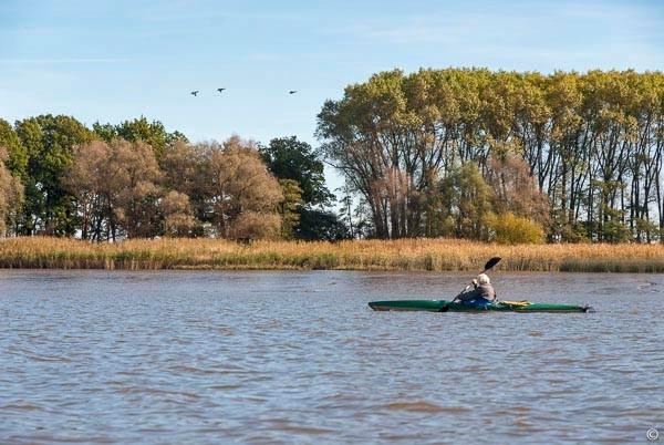 kajaking the Elbe tidal River