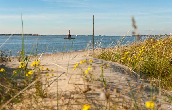 "beach of Pagensand island . Leuchtfeuer Pagensand Süd 53°39'48,94"" / 9°31'34,87"""