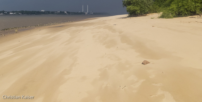 Beach of River Elbe