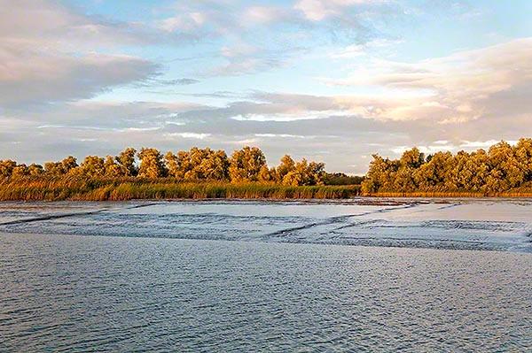 tidal mud flats uft