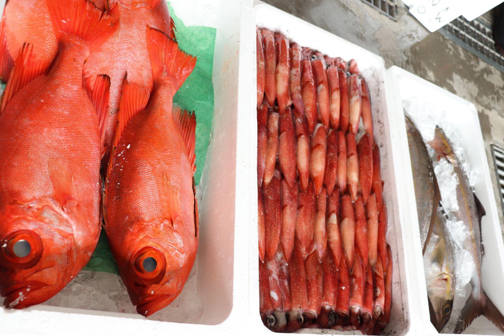 イカと金目鯛と天然カンパチ!