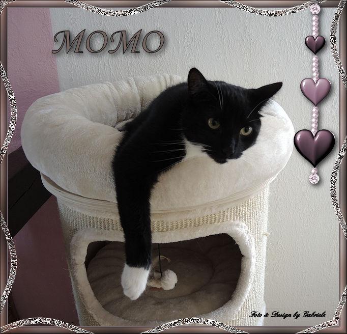Momo  relaxt