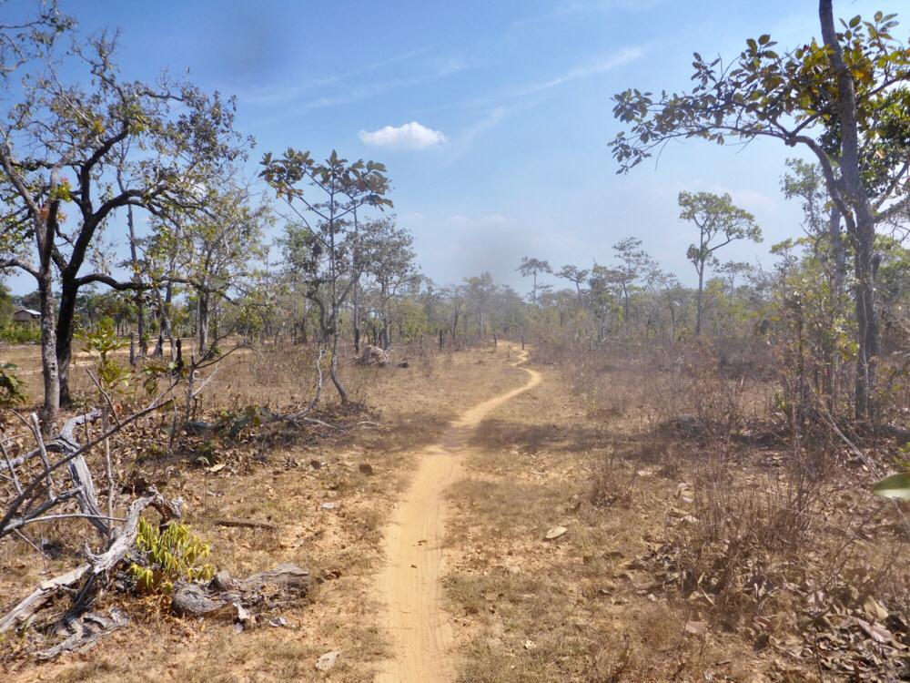 Beautiful wilderness between O Samong an Ban Ke Toch