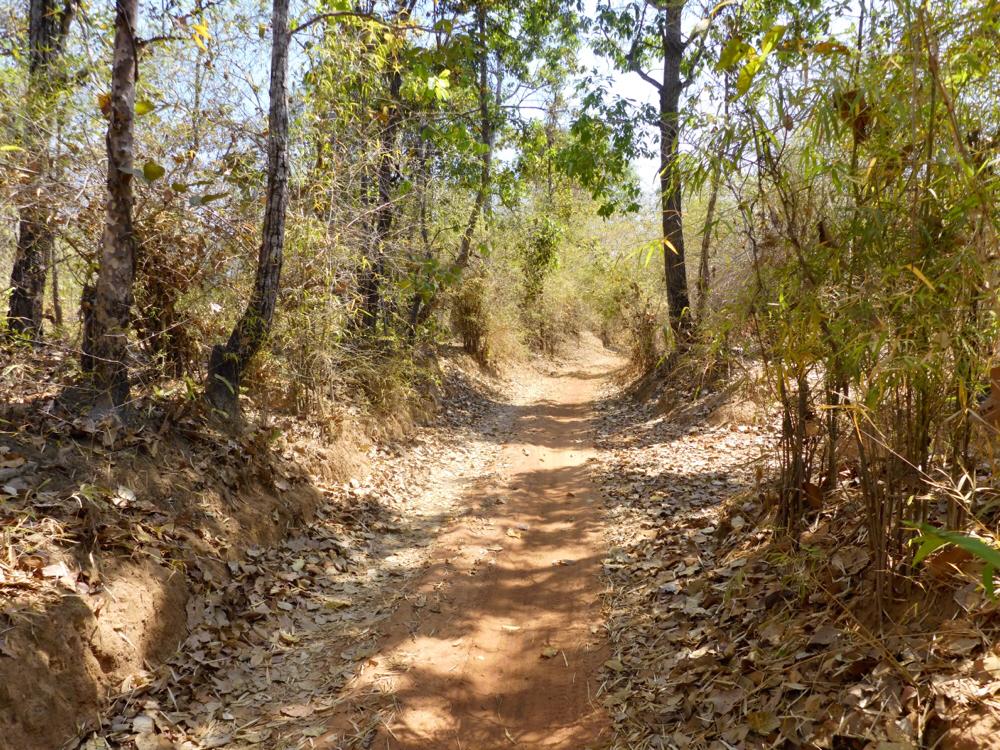 Sandy path between O Samong and Ban Ke Toch