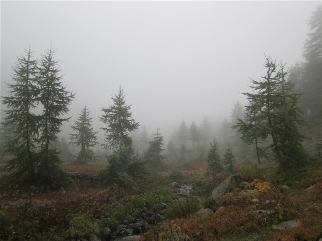 Remontée brumeuse du vallon de Tesina (variante)