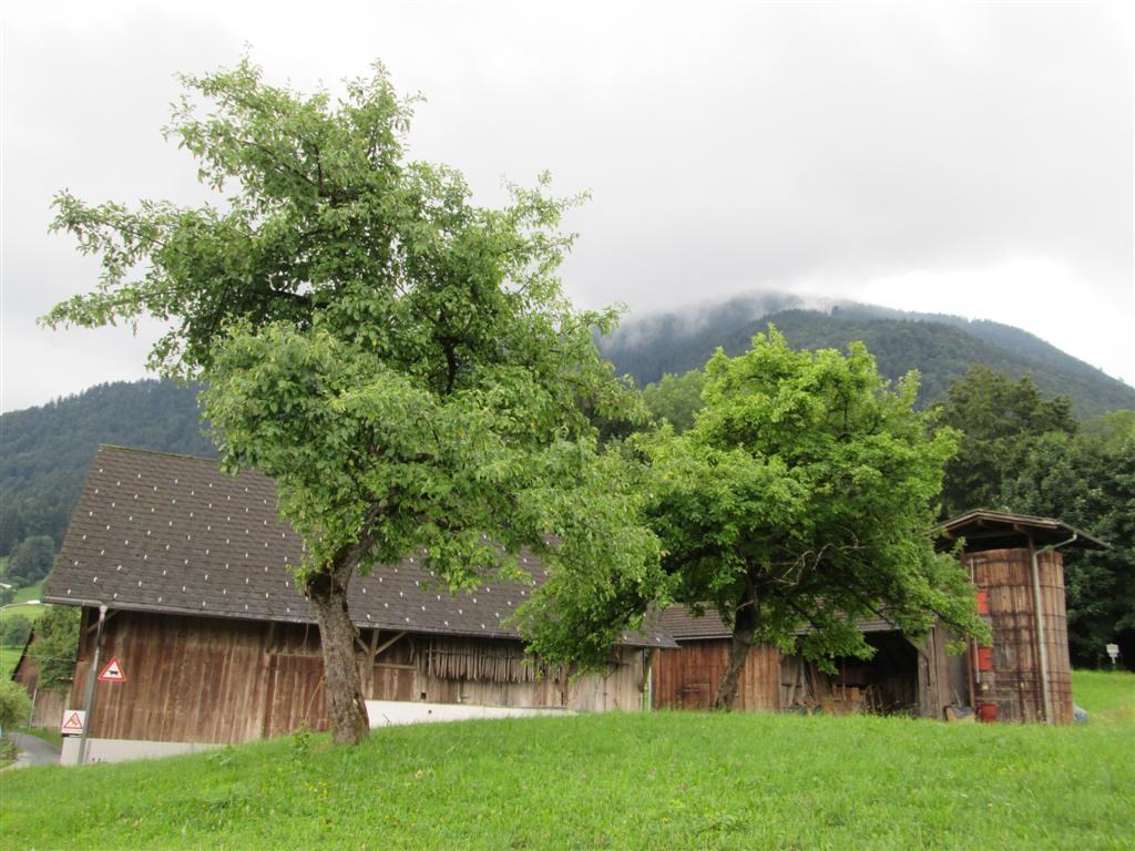 Une ferme, vers Amerlugen (780m)