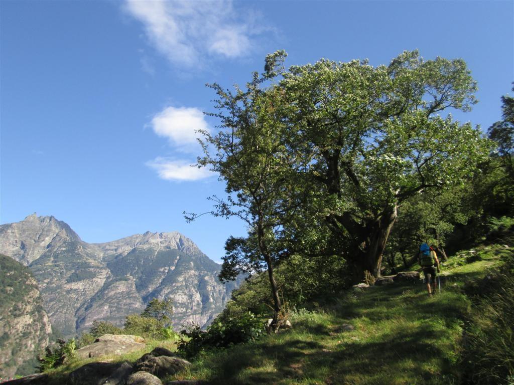 Début de la remontée du Val d'Ambra sous une forte chaleur !