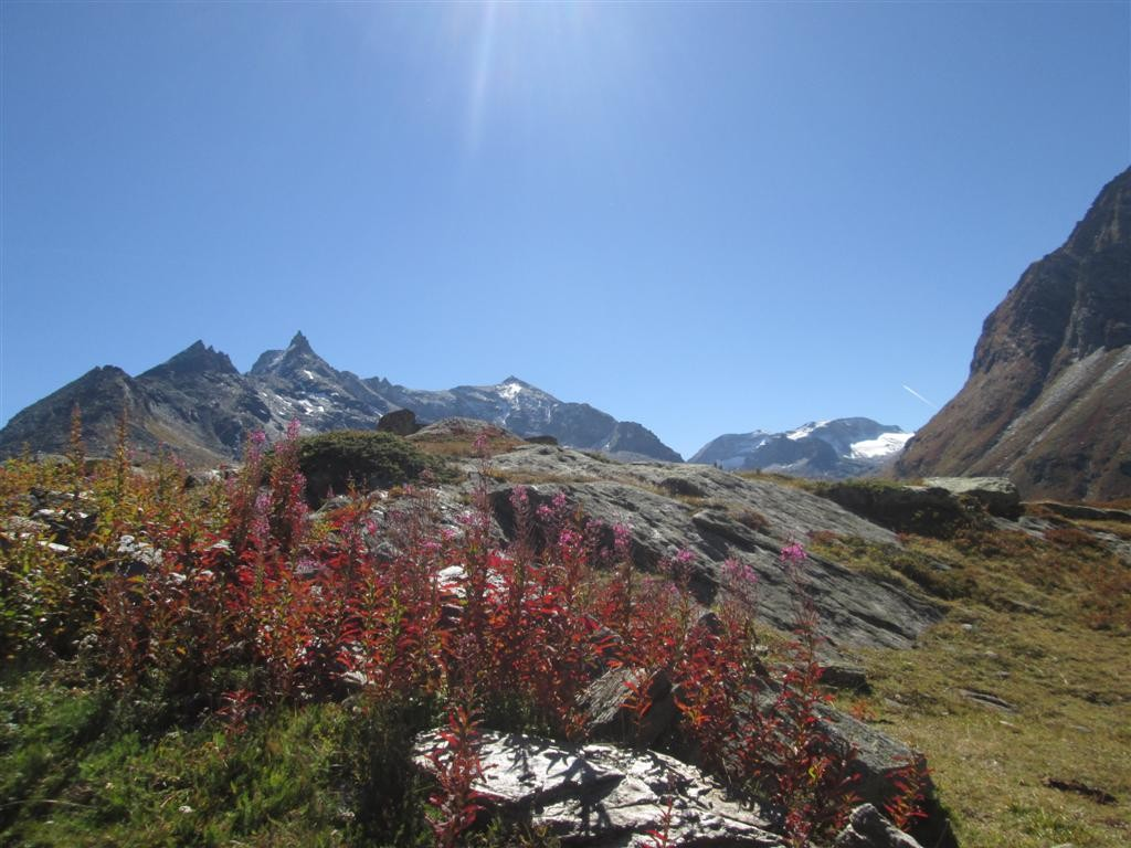 Vallon du Clapier et massif d'Ambin