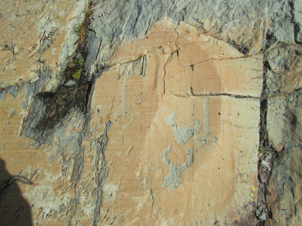 Peinture rupestre de la vallée des Merveilles