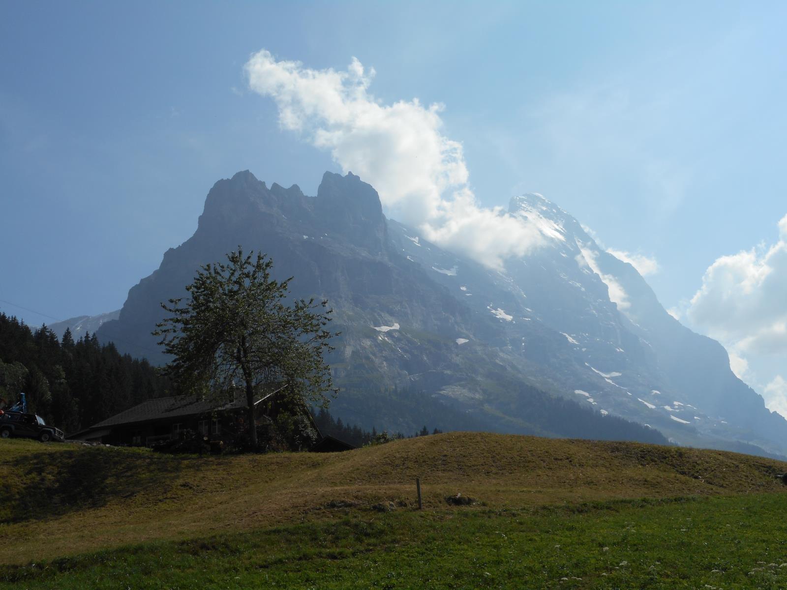 Vue plein ouest sur la paroi de l'Eiger depuis les faubourgs de Grindelwald
