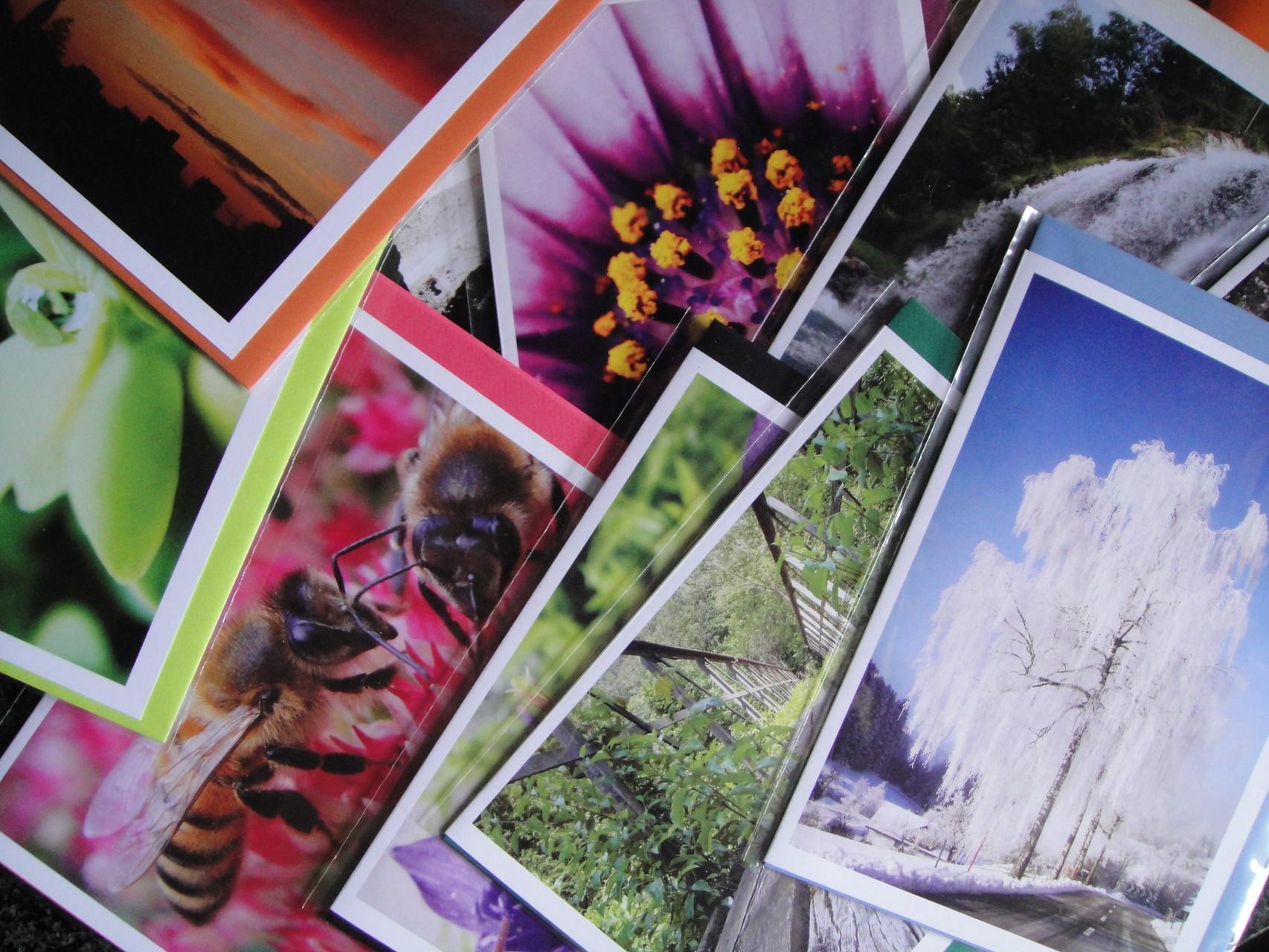 Fotografie - Grusskarten