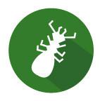 Drôme Diagnostique immobilier réaliser l'état relatif àa la présence de termite