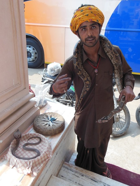 2013 This Snake Charmer in Agra patiently posed for our Photos