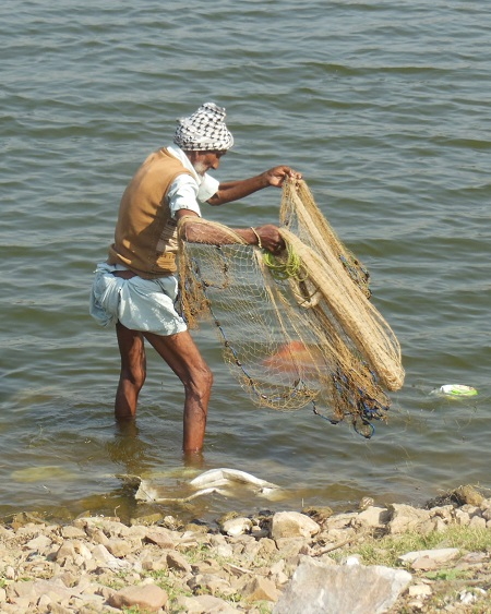 2013 A Fisherman casting nets at a lake in Jaipur