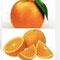 Entspannung: Süsse Orange und Majoran bei der Aromatherpie für Hunde
