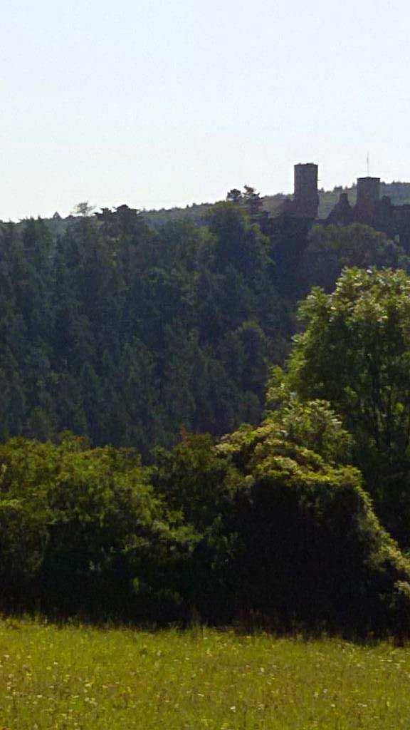 Ruine der Burg Hanstein