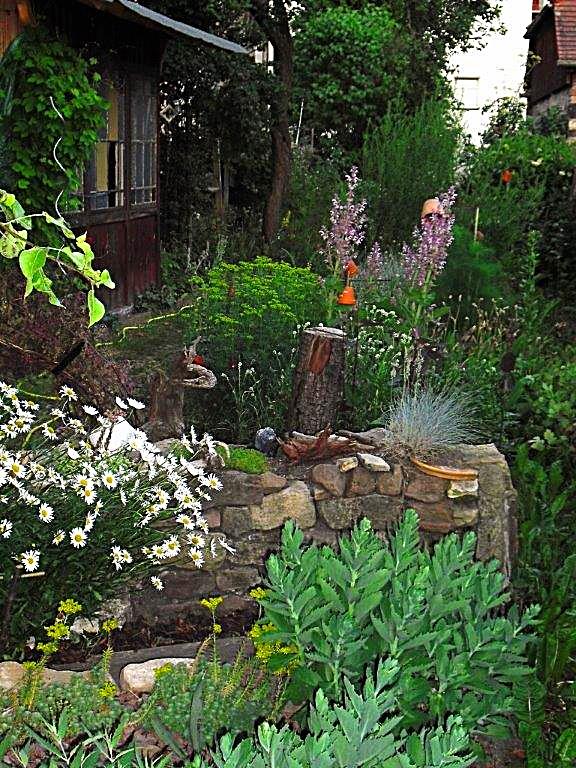 Abendstimmung im Kräutergarten