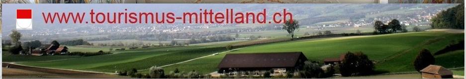 Werden Sie Partner des grössten Mittellands Portals der Schweiz - inkl. Immo-Mittelland.ch