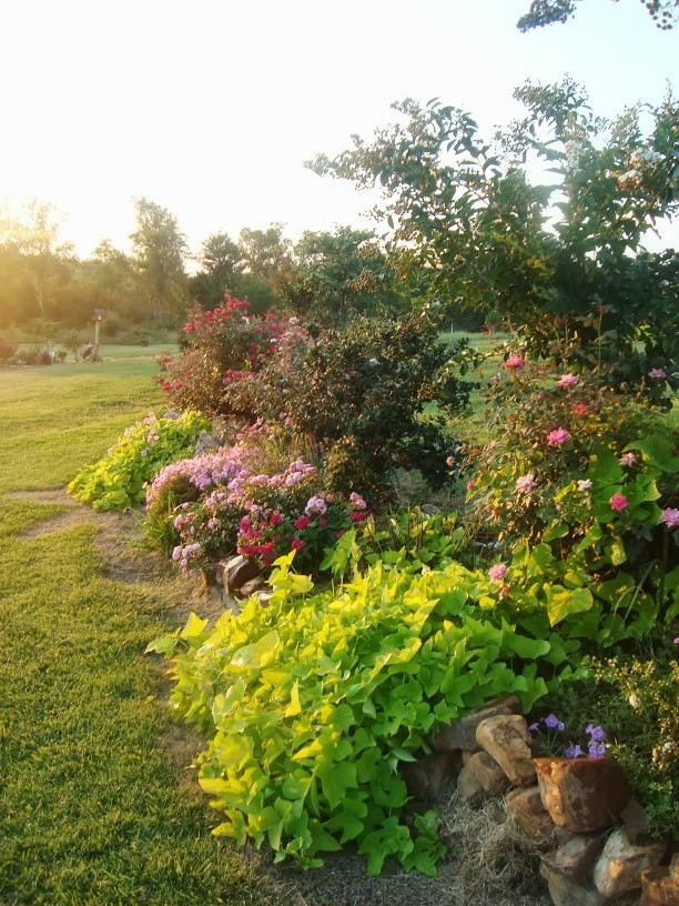 just some of the many flower beds