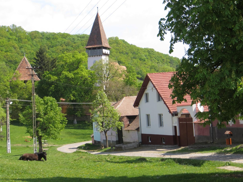 Mesendorf (Siebenbürgen)