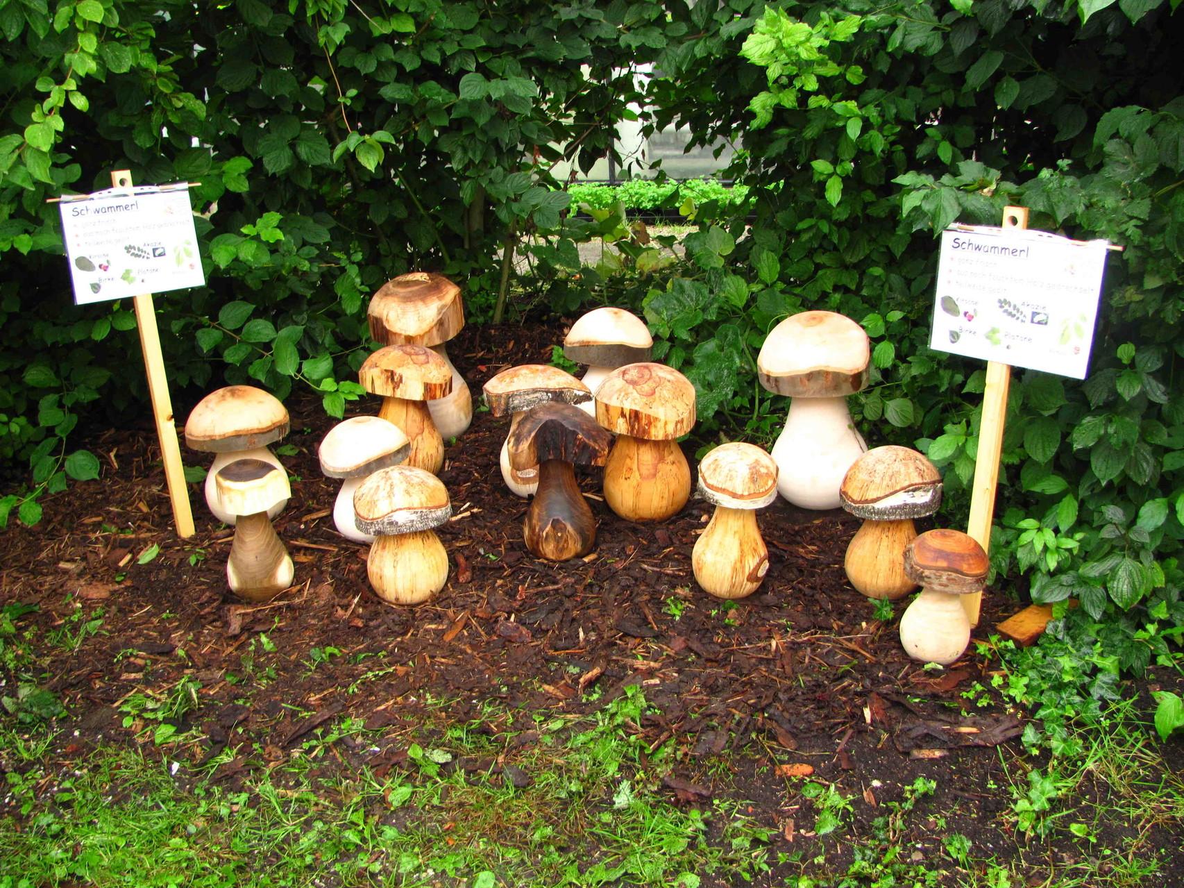 Auswahl an Pilzen beim Ökomarkt in Straubing im Jahr 2012