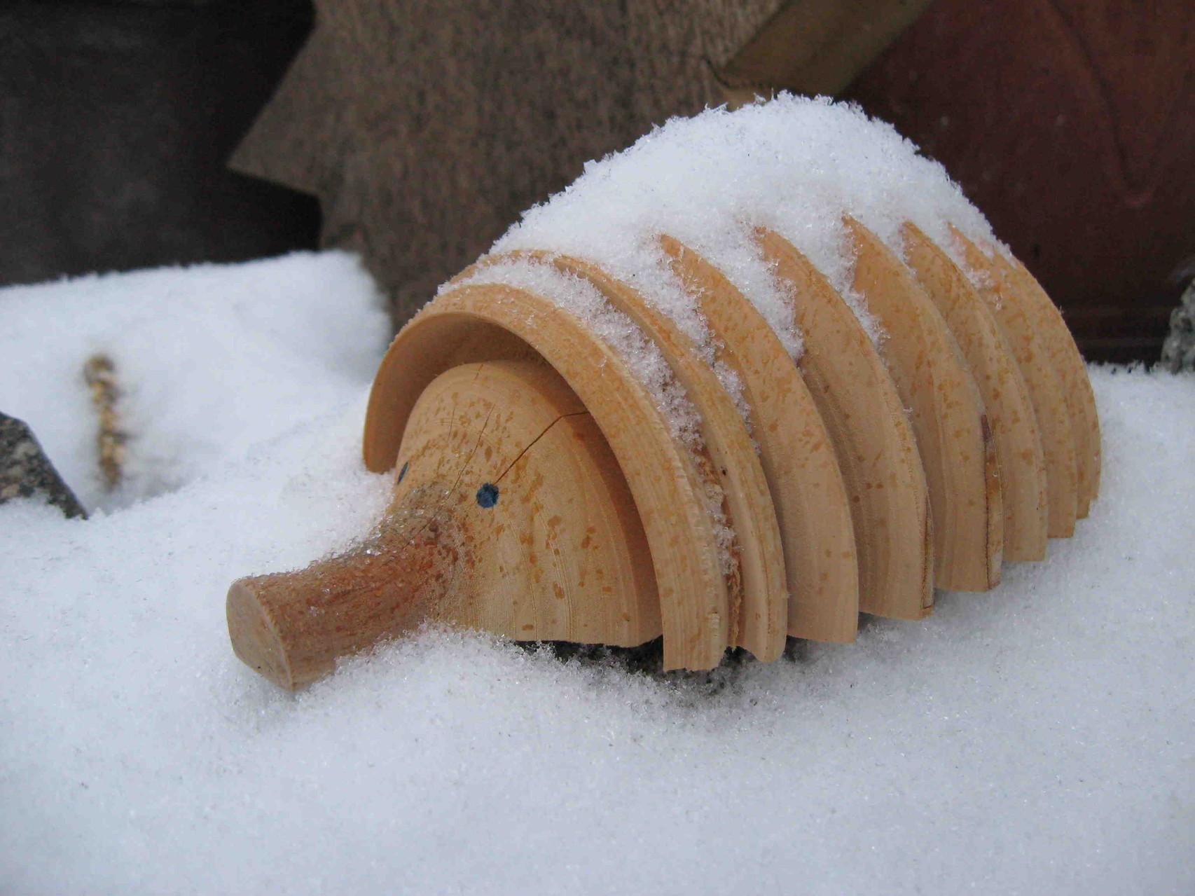 Winterfester Igel.
