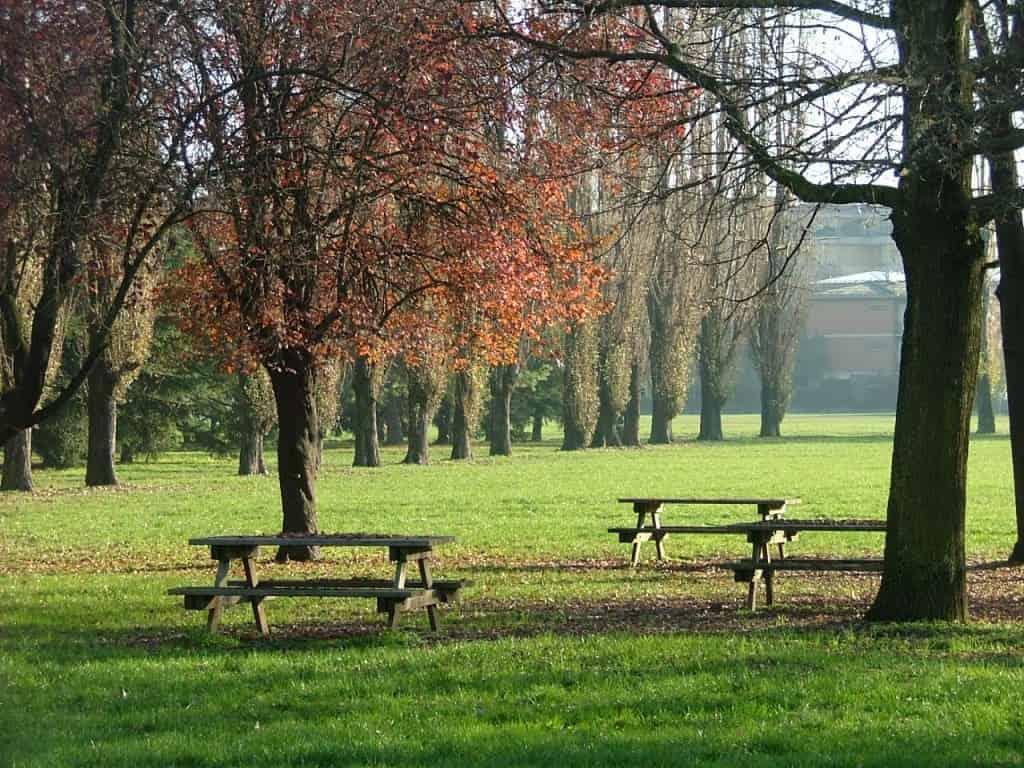 Parco della Memoria: un'iniziativa per le vittime amianto