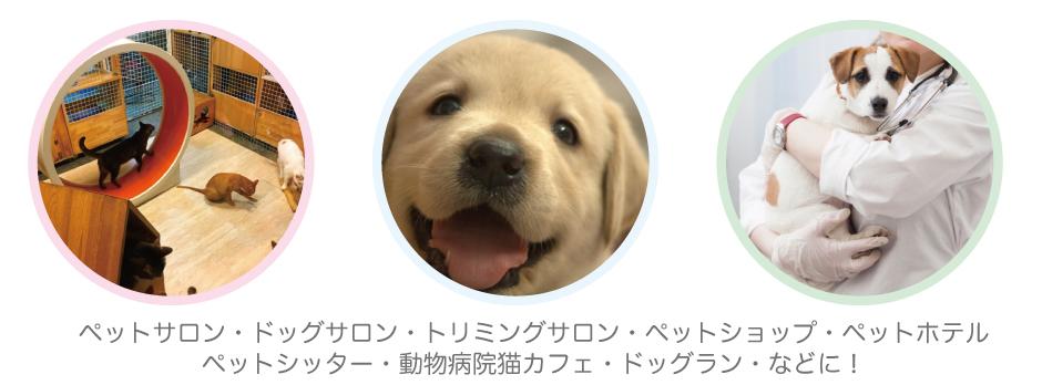 ペットサロン・ドッグサロン・ペットクリニック・猫カフェ・トリミングサロンの広告作成