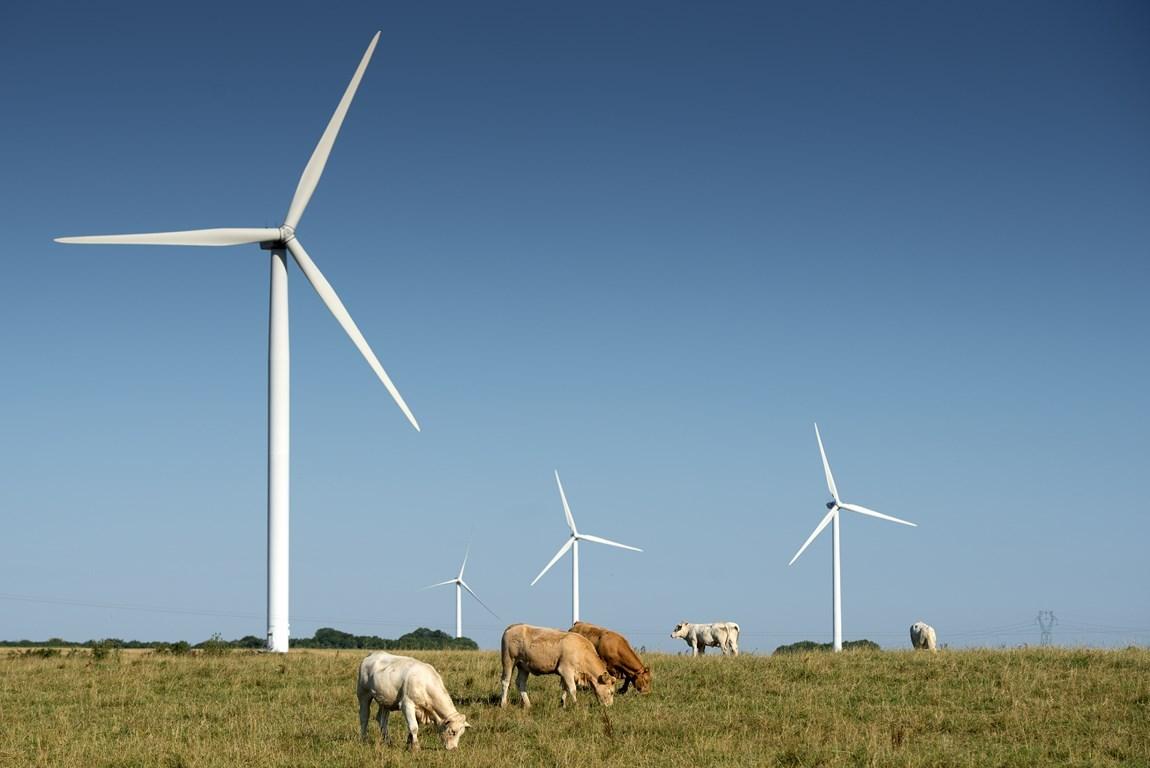 éoliennes paysage de meuse