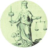 Attività giudiziale - Avvocato penalista