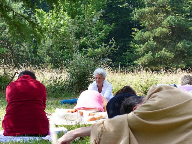 Danielle Heliot trad. Shivananda Saraswati - Au jardin japonais