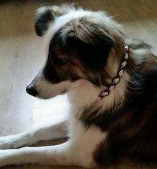Aileen mit ihrem EM-Keramik Halsband aus Paracord walnut brown / beige