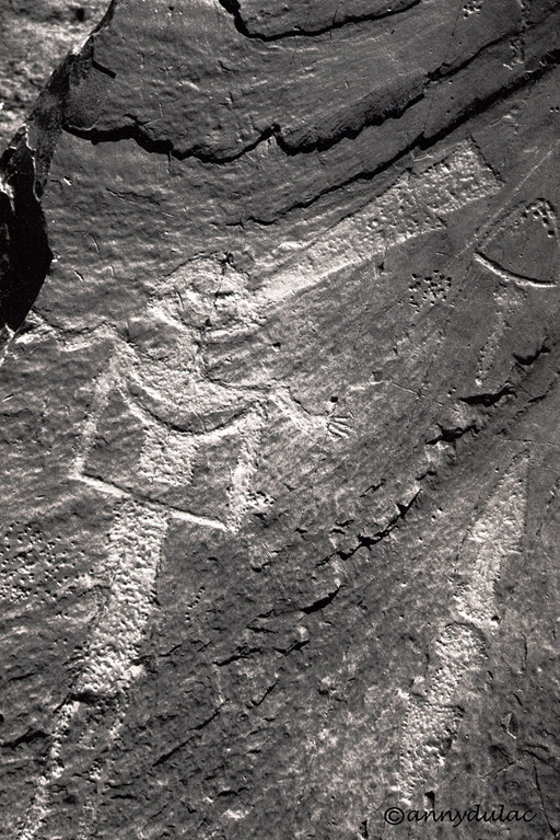 Gravures rupestres , vallées  des Merveilles, France 1988