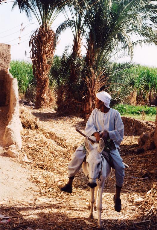 Ile Elephantine, Egypte 1996