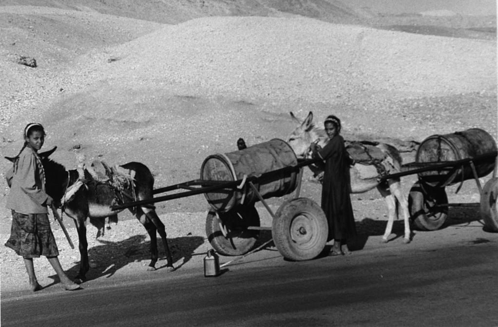 Transport de l'eau, vallée thébaine, Egypte 1996