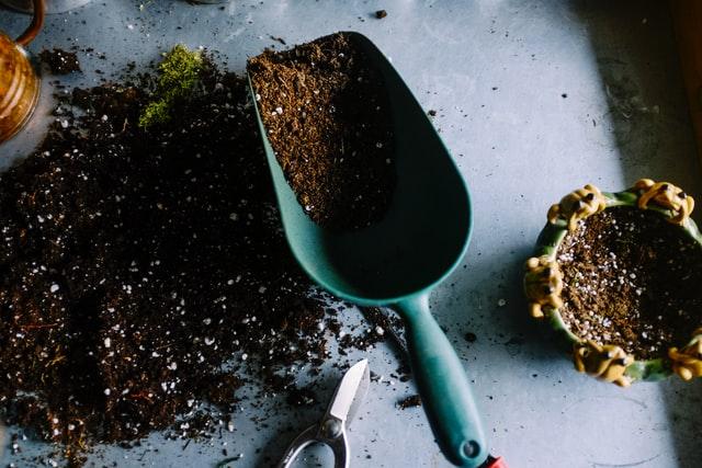 Tuinkalender mei - Tuintips voor onderhoud tuin