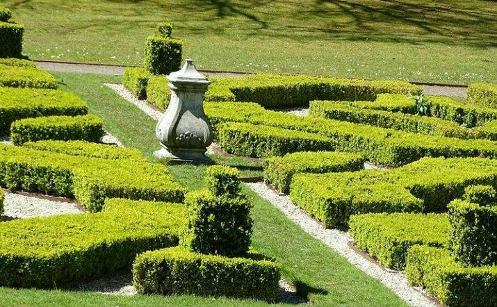 bij de engelse tuin van Landgoed Clingendael wandelen