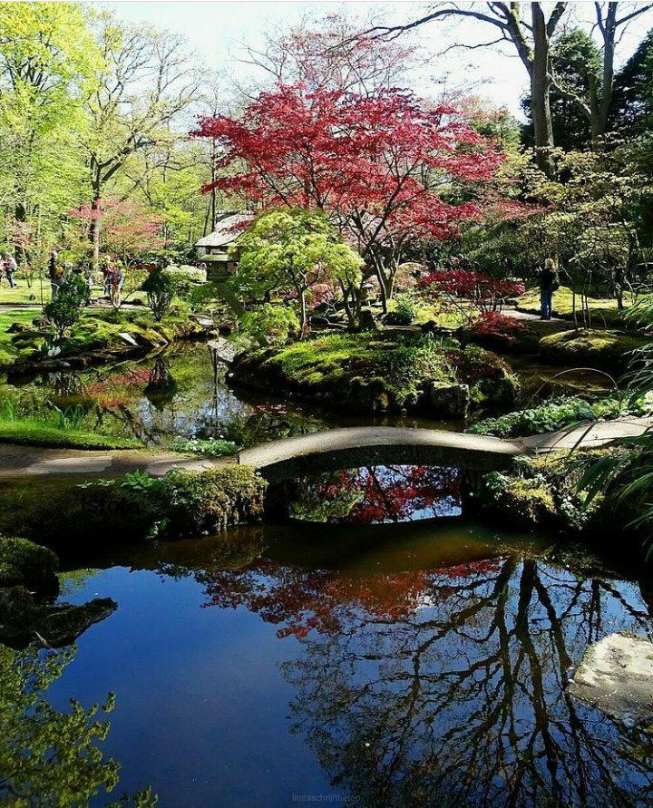 Wanneer is de Japanse tuin in Clingendael open?