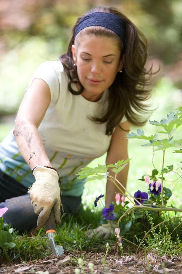Wat zijn de tuintrends 2021 | Inspiratie, ideeën en tips voor de tuin