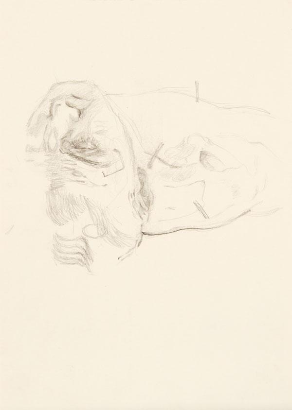 10  |  Ohne Titel  |  2011  |  Graphit auf Papier  |  29,7 x 21 cm