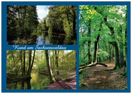 303b rund um Sachsenwaldau