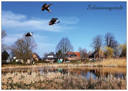 301b Schönningstedt Landung