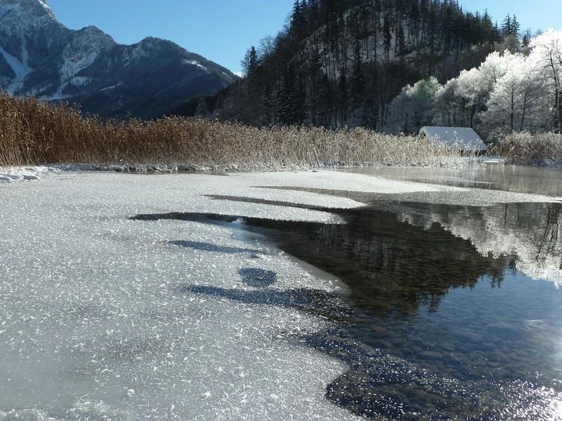 Der Leopoldsteiner See friert zu