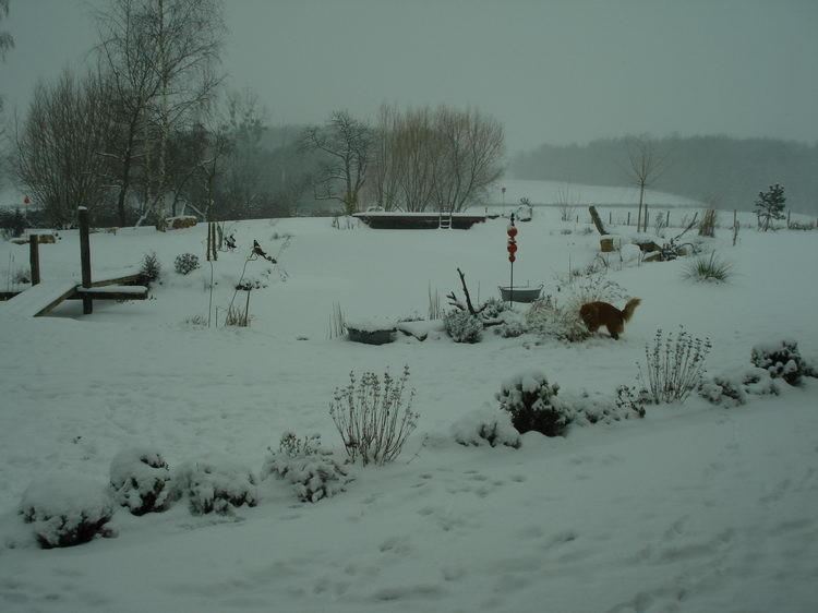 Derweil schneit es herrlich