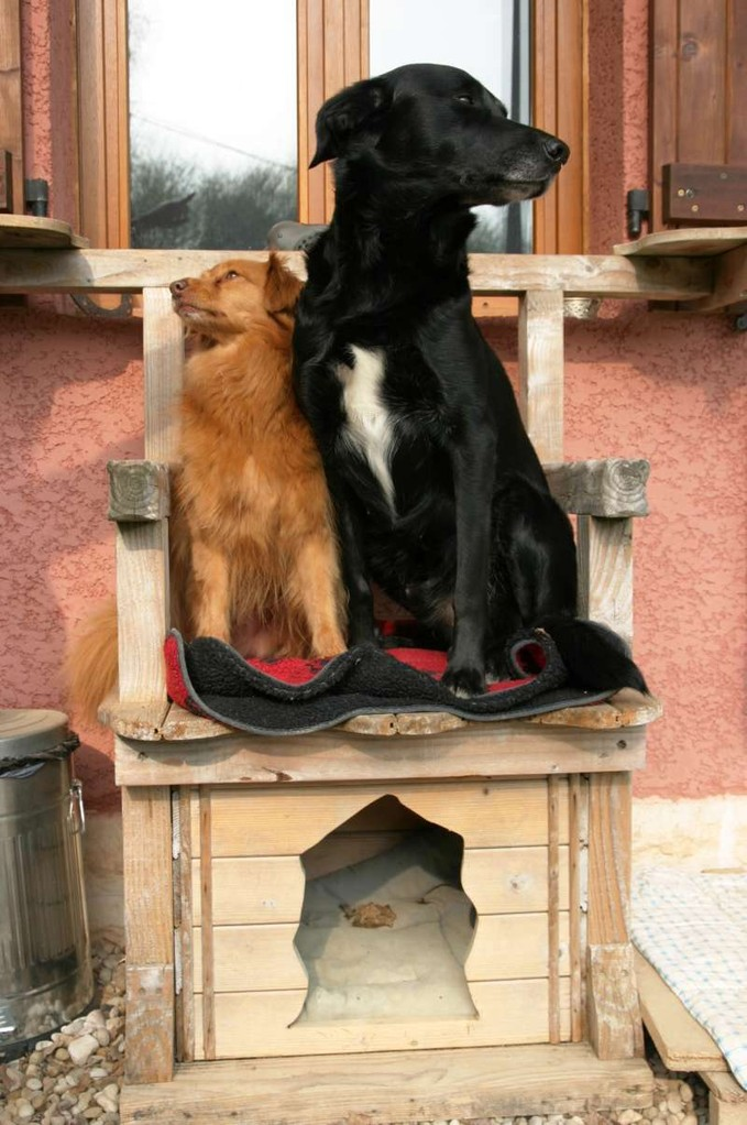 Zorro und Lucky Luke