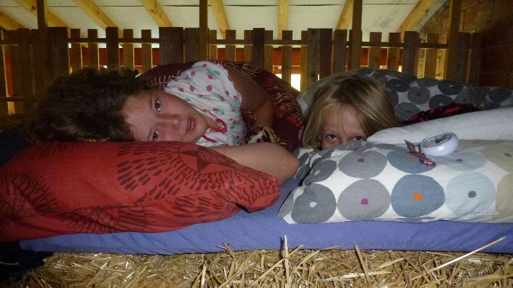 Ladina und Zora - Schlafen im Stroh