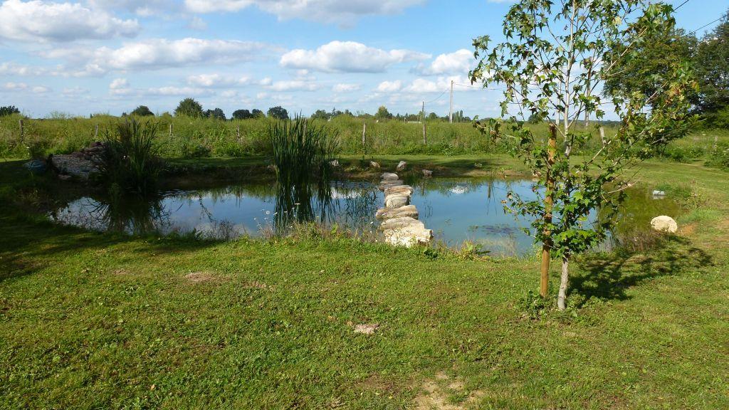 Der vordere Teich hat sich gut gefüllt
